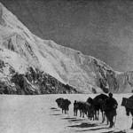 Экспедиция Погребецкого